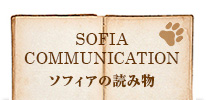 SOFIA COMMUNICATON