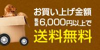 お買い上げ金額6,000円以上で送料無料